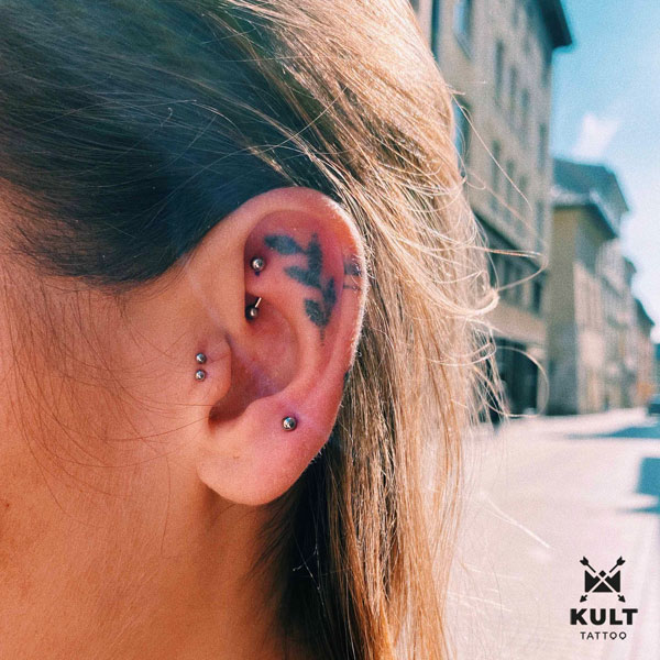 rook, double tragus, upper lobe
